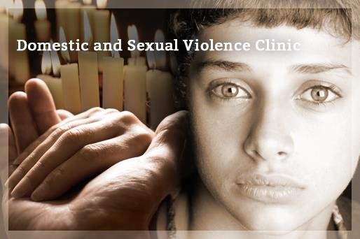 Domestic Violence Clinic